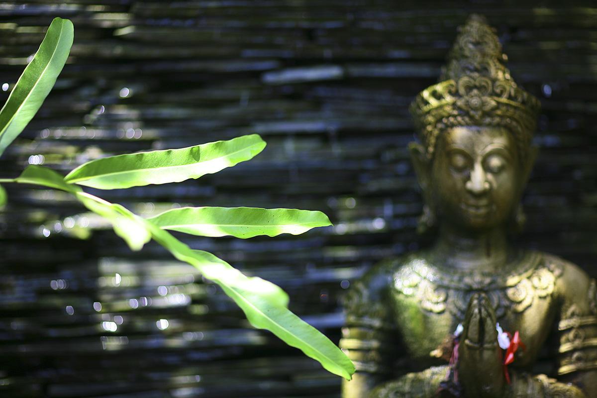 Thailand asian bliss