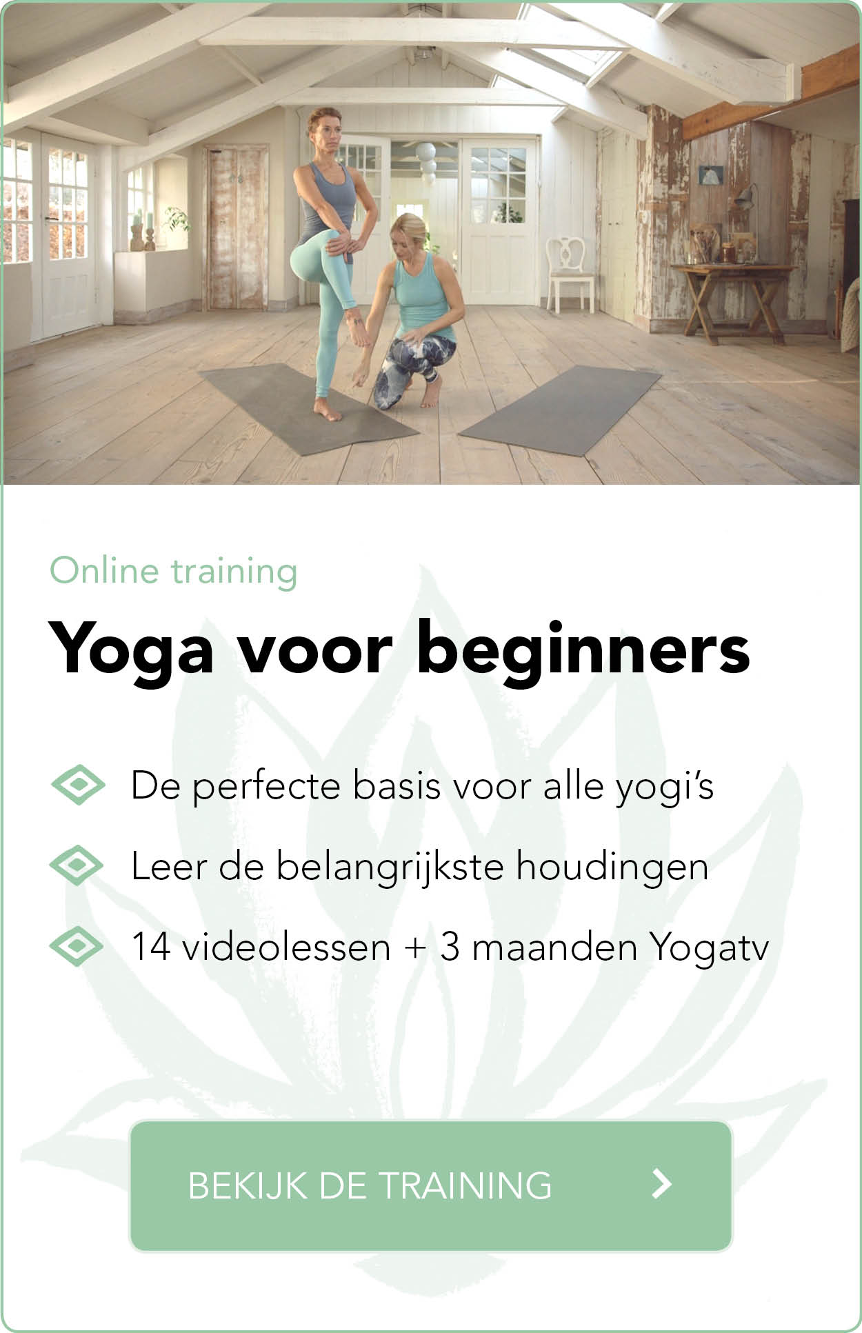 online training yoga voor beginners