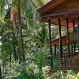 Op avontuur in de heuvels van Costa Rica