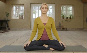 1 Wat is yoga?