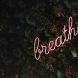 Yoga-agenda: verrijk je geest en open je hart