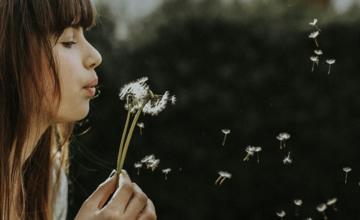 Gratis Minitraining Manifesteren met de 7 spirituele wetten van succes
